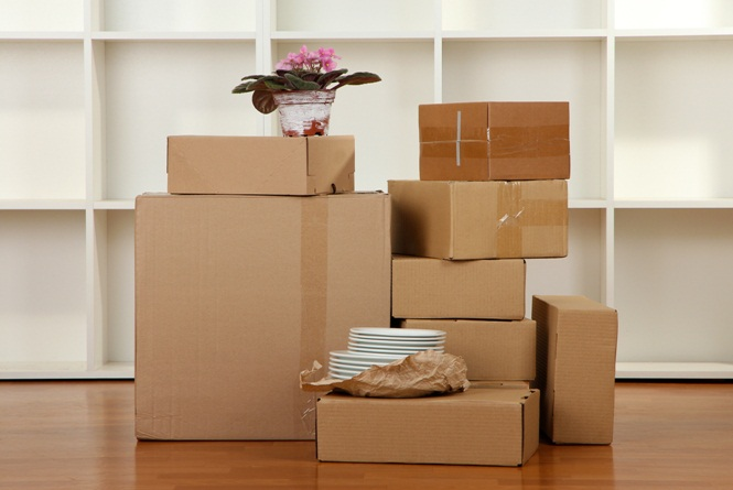 Moving Boxes For packing